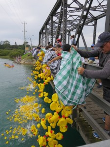 2016-01-26 Australia Day Duck Race 1